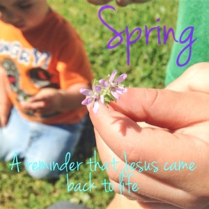 Spring reminds us that Jesus is alive
